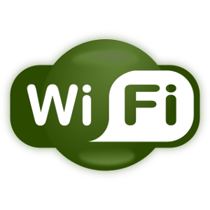 NetCamPro WiFi Setup