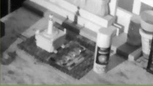 NCP2255I Night Shot Zoomed using external IR